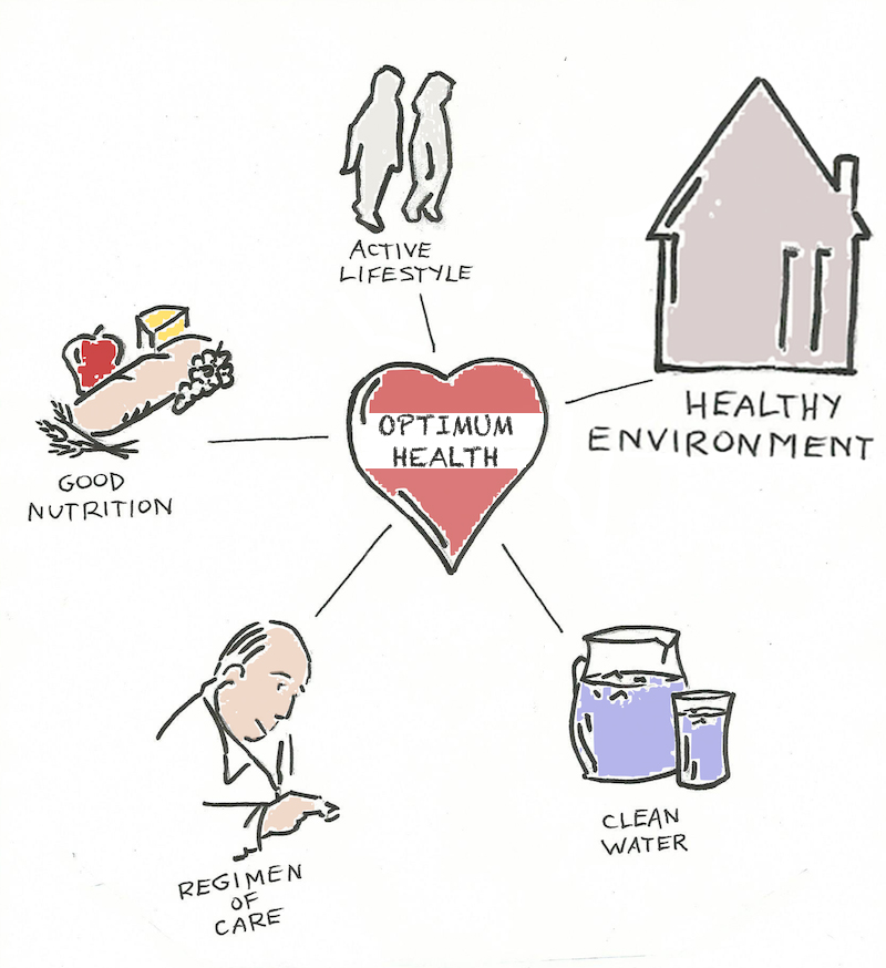 Healthiness Updated Image